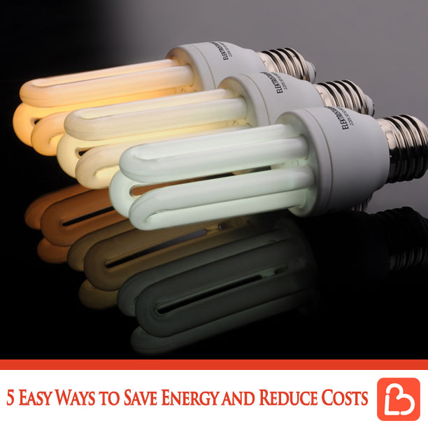 5 Easy Ways to Save Energy and Reduce Costs